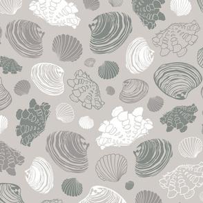 Seashells Paradise Clams Cool Slate Neutral  Look