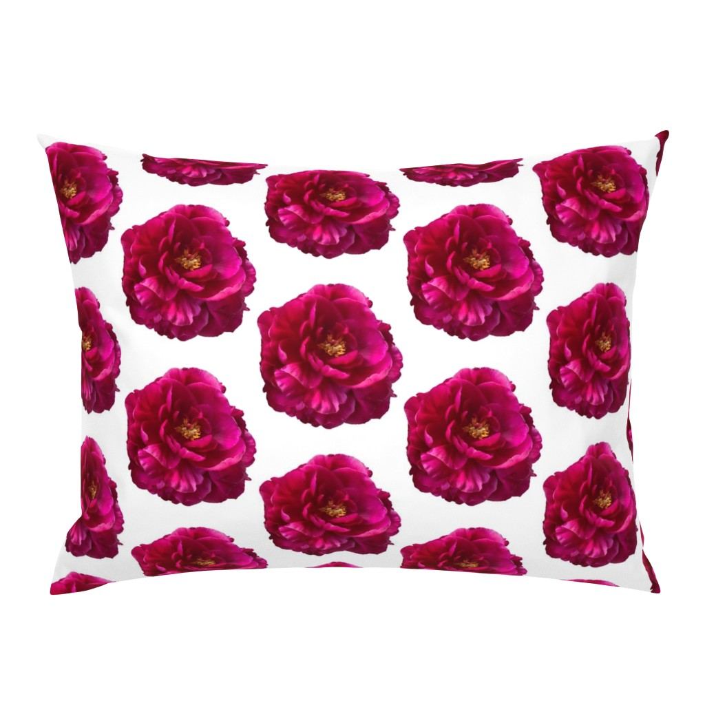 Campine Pillow Sham featuring Peony Flower by creative_spaces