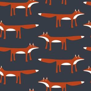 Fox in the Dark