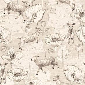 Lambs and poppy for good sleep