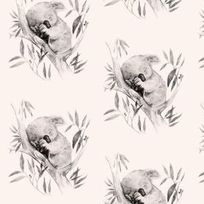 Sleepy Koala, Vanilla // standard