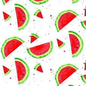 Juicy Watercolor Watermelon