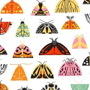 Moth Mania