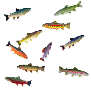 trout scatter