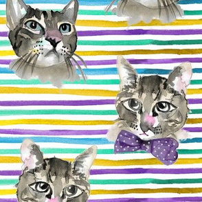 Rainbow Stripes with Water Color Cats/Kittens