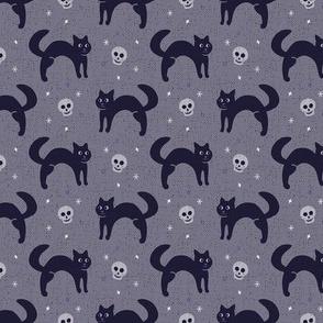 Black Cat Nights