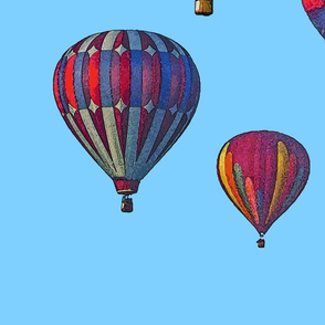 Hot Air Balloon Cheater Quilt