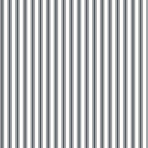 Ticking Stripe in Slate