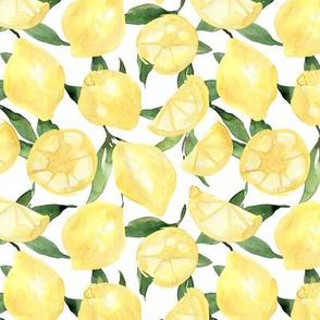 Lemons and green leaves on white background