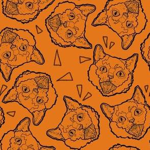 Halloween Cats on Orange