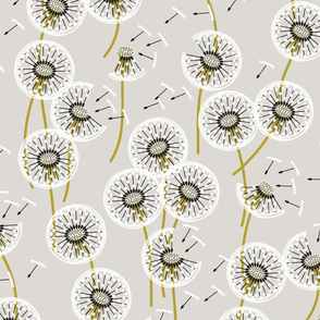 dandelions for Staci