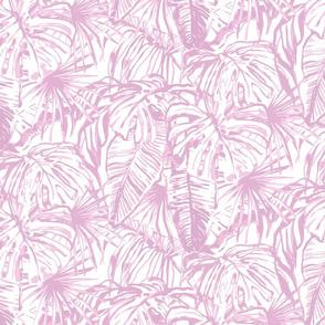 lavender jungle