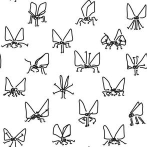 Disco Moths