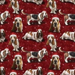 The Christmas Basset Hound