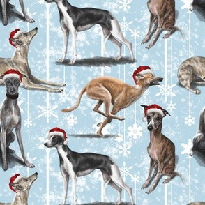 The Christmas Whippet