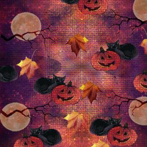 Pumpkin lover