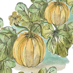 Antique Botanical Pumpkin Patch Sketch