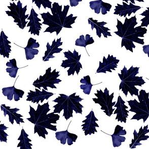Sun dyed indigo leaves