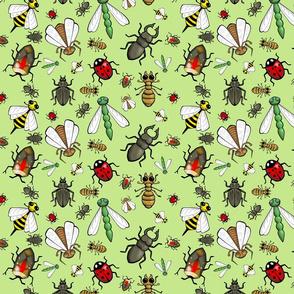 Spring Bug Catching