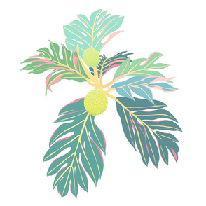 Breadfruit Muted Colors