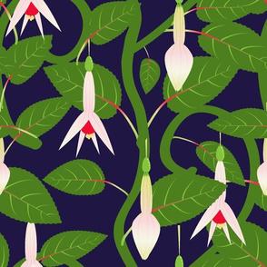Navy Fuchsia