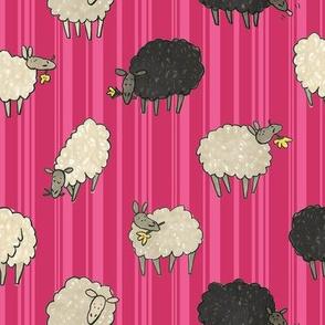 Sheep! in raspberry