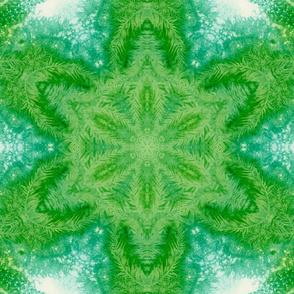 An Evergreen Snowflake