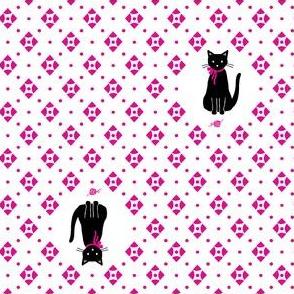Cat Geo
