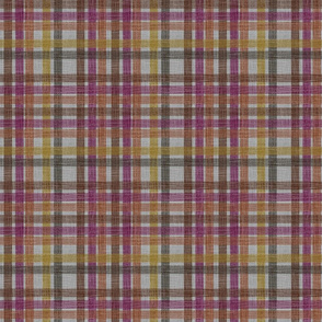 Susanna in September - joyful plaid