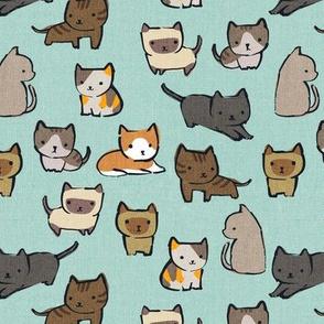 Cats {Sky} - small