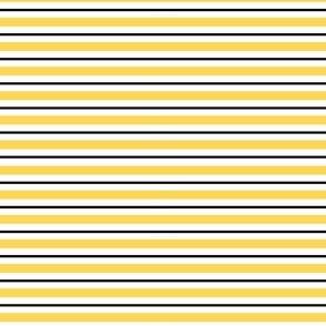 Bumblebee Stripes, Horizontal, Yellow and Black