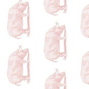 TEA TOWEL PIG PINK