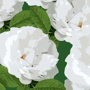 White Rose Dark Green