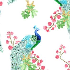tramuntana peacock large scale