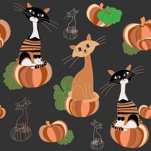 Halloween Curious Cats on pumpkins