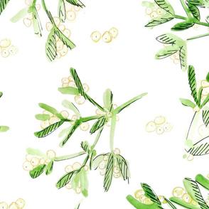 Mistletoe Winter Flora