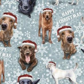 The Christmas Labrador Retriever