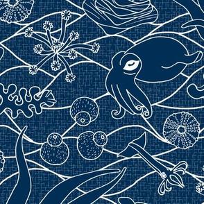 Cephalopods - Bg Blue - White Lines