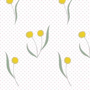 Yellow Puff Flower