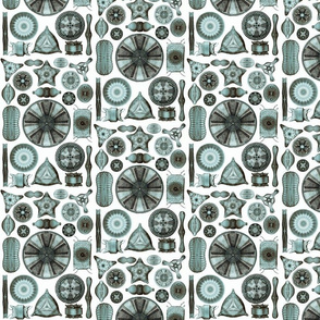 Ernst Haeckel Diatomea Diatoms in Teal Chamois