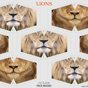 Lions Face mask panel - lion and lioness