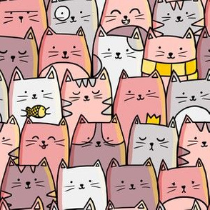 Lines of cats