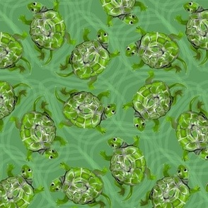 Bright Green Swimming Turtles