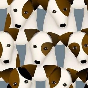 lots of terriers - parson jack russells - JRT PRT dog pattern - large