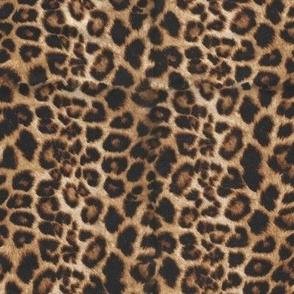Cheetah leopard brown/tan