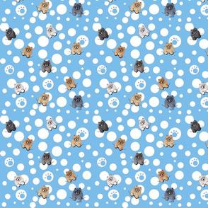 Little Doggy Chow Chow-Blue