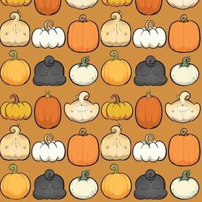 Pumpkins and Pug Butts - pumpkin pie