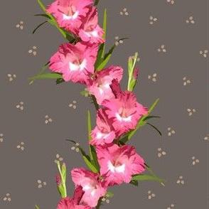 Pink Gladiolus Stripe - Taupe