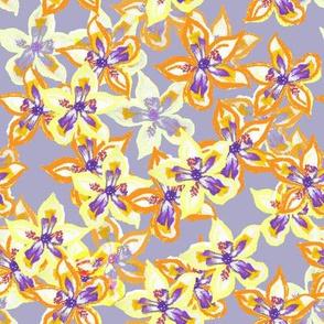 Exotic Irises