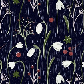 Snowdrops and berries